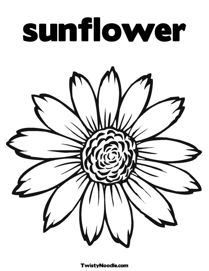 free black and white clip art sunflowers - photo #4