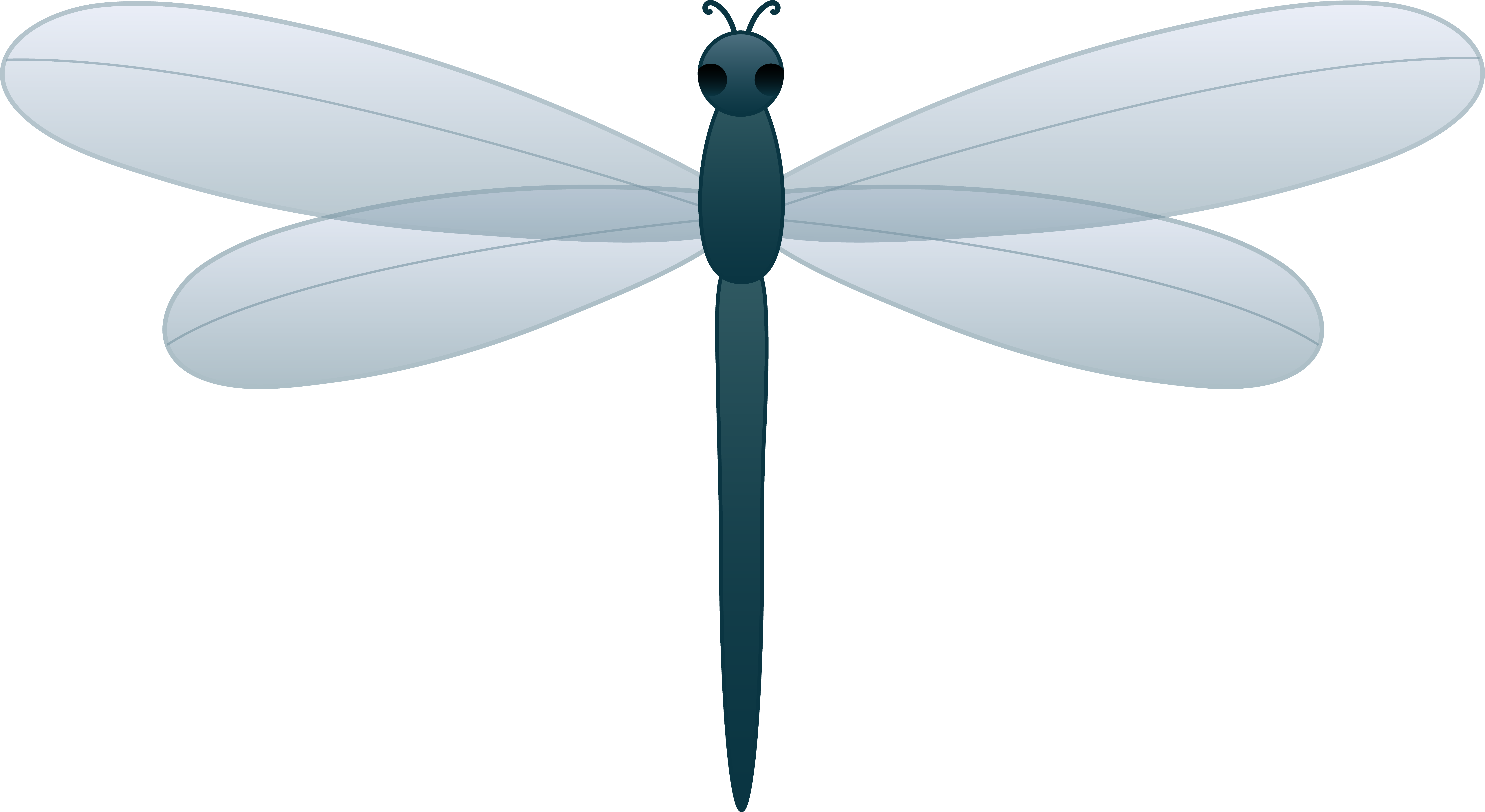 Cartoon Dragonfly Clipart - Clipart Kid