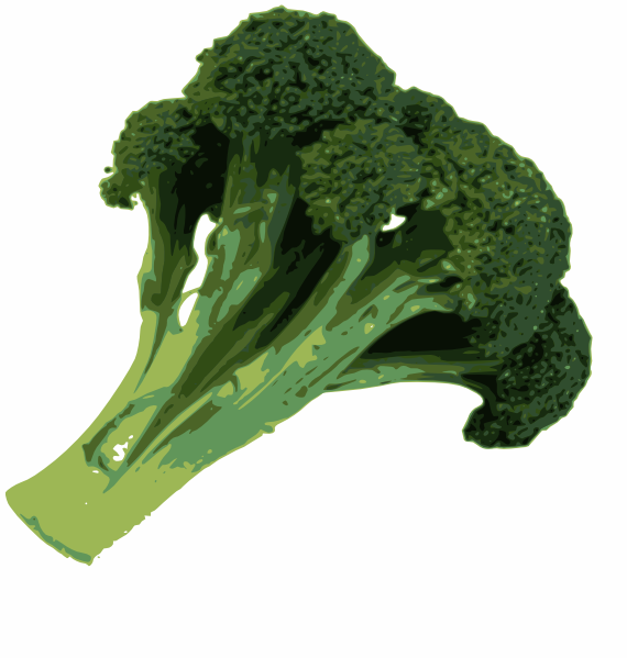 Broccoli Clip Art At Clker Com   Vector Clip Art Online Royalty Free