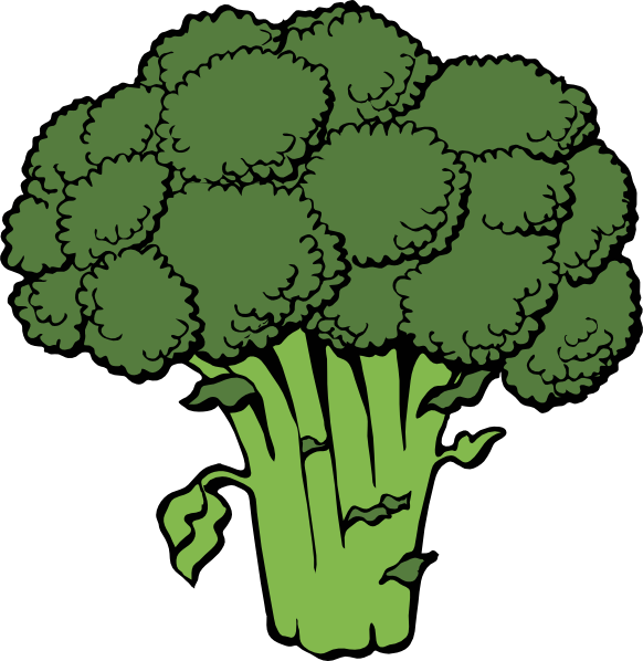 Broccoli Clip Art   Images   Free For Commercial Use