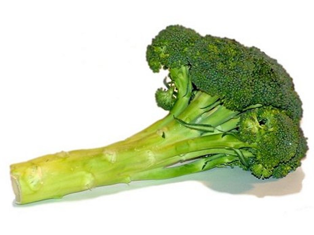 Free Broccoli Clipart Pictures