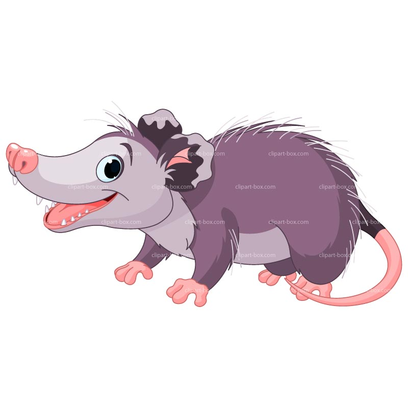 Cartoon Possum Clip Art Quotes