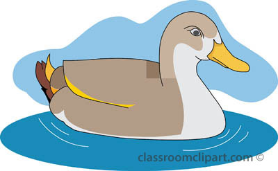 Duck Clipart   Ducks 03 Swimming Pond   Classroom Clipart