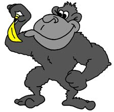 Http   Www Hqprimary Co Uk Gorilla