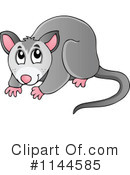 Royalty Free Possum Clipart