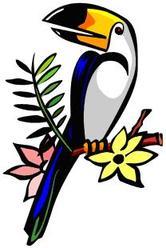 Rainforest Clip Art Border   Clipart Panda   Free Clipart Images