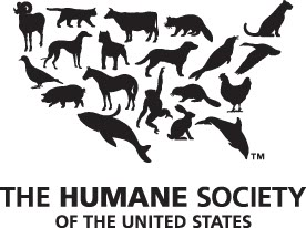 What Shelter System    Animal Rescuers Coalition Of North America