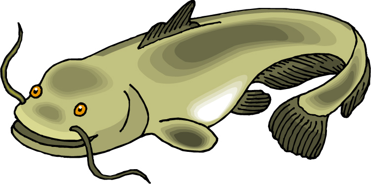 Catfish Dinner Clipart And The Catfish People Are