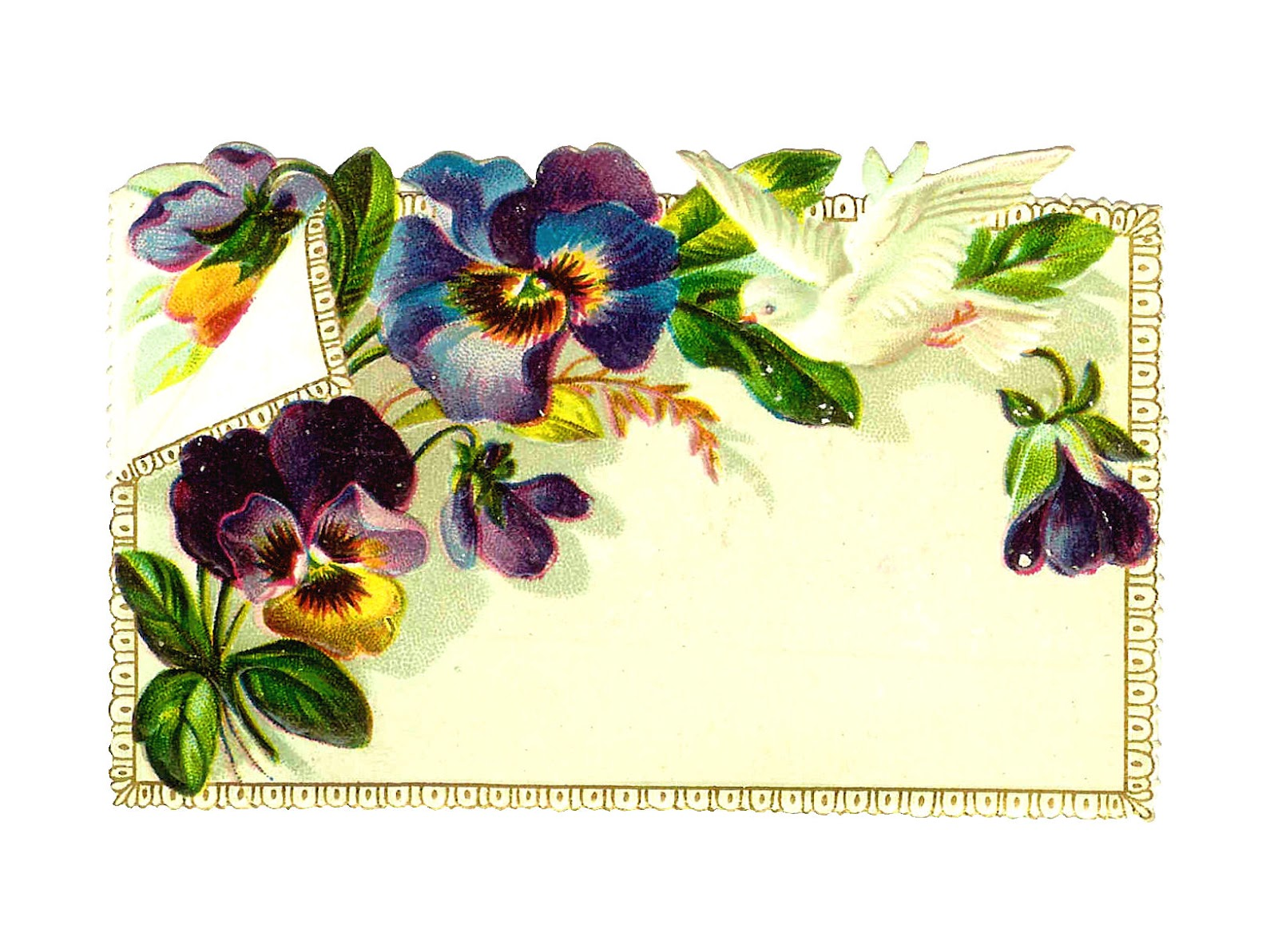 Flower Clip Art  Purple Pansies With White Dove On Victorian Note Card