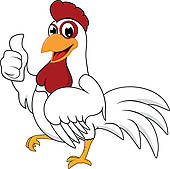 Chicken Illustrations And Clipart
