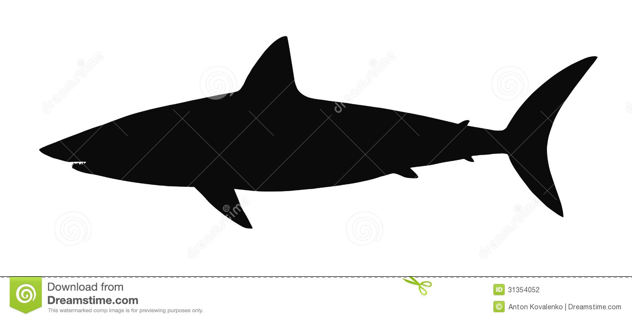 Vector Silhouette Of Shark  Stock Photography   Image  31354052