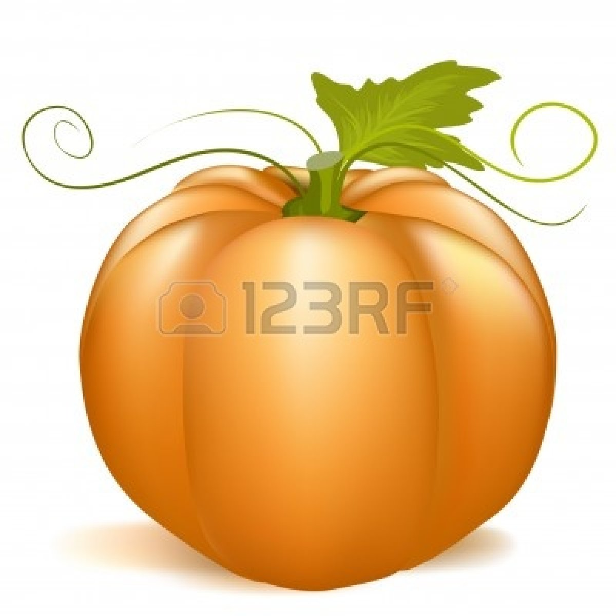 Cute Pumpkin Patch Clipart 7730089 Pumpkinjpg Clipart