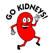 Happy Kidney Clipart   Cliparthut   Free Clipart