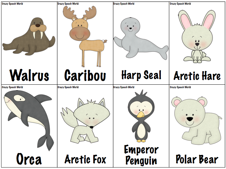 Arctic Hare Clipart Arctic   Antarctic Animal