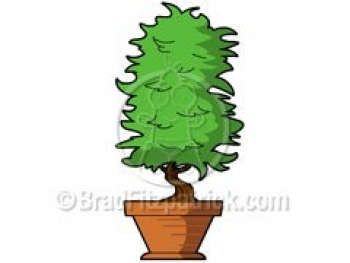 Cartoon Plant Clipart Picture   Royalty Free Plant Clip Art Licensing