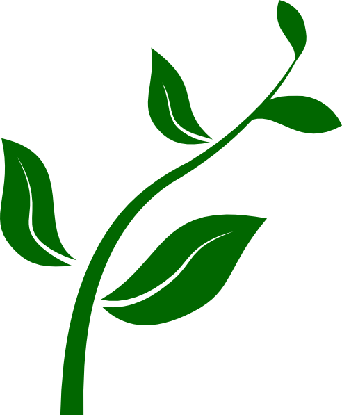 Growing Plant Clip Art At Clker Com   Vector Clip Art Online Royalty
