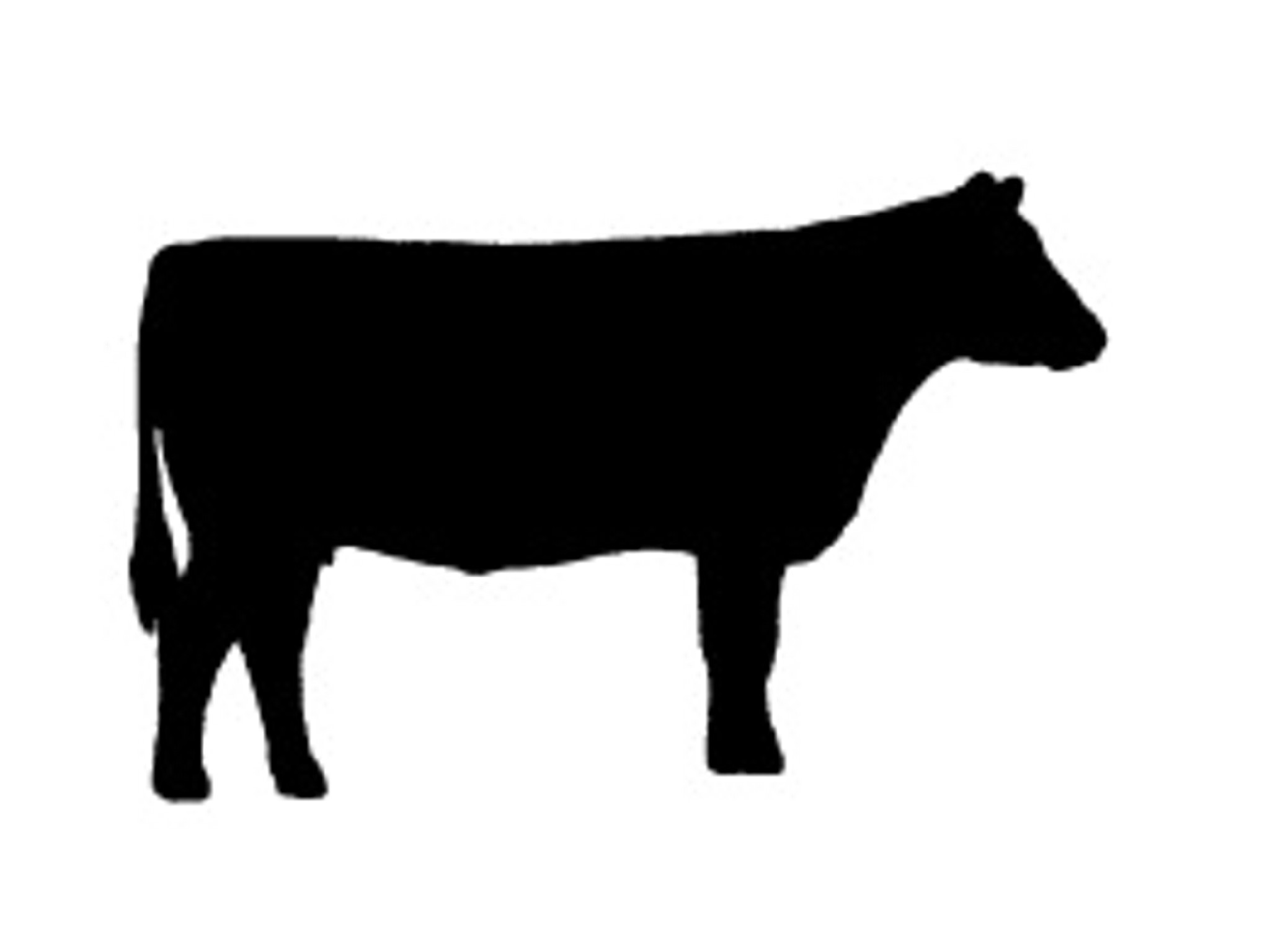 Cattle Silhouette Clipart - Clipart Suggest