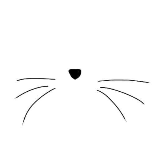 Cat Black And White Transparent Cat Whiskers Transparent Cat Trans Par