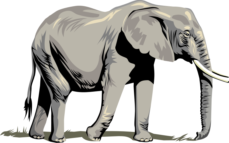 realistic animal outline clipart