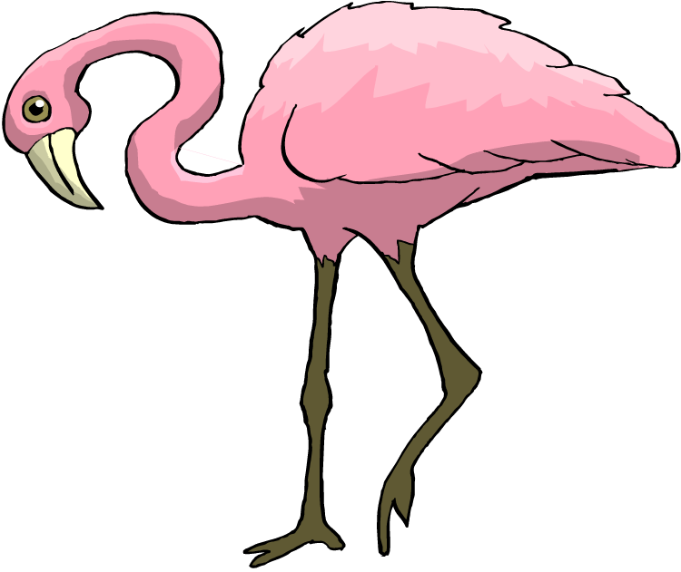 flamingo clipart clipart suggest