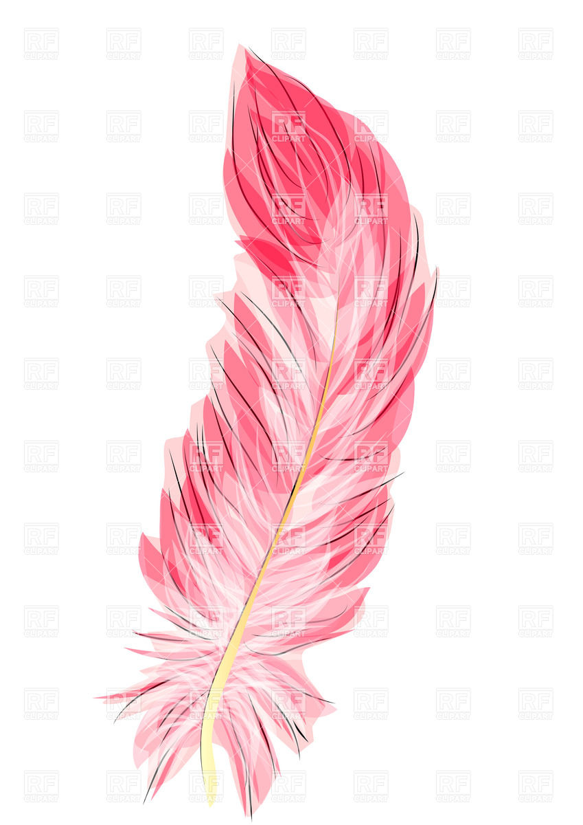 Flamingo Feather 35257 Download Royalty Free Vector Clipart  Eps