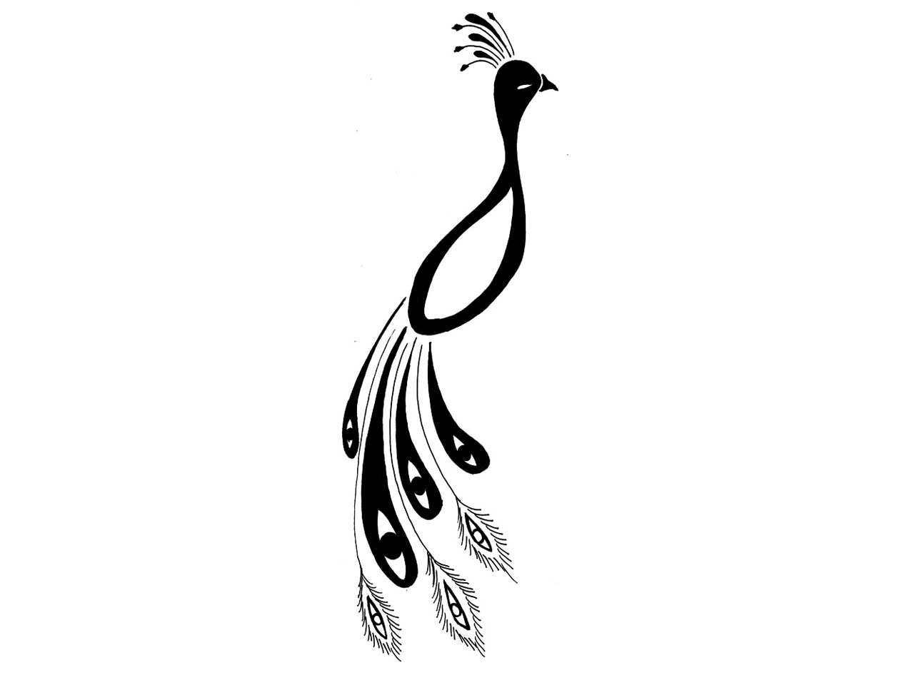 Simple Peacock Feather Design Clipart Panda Free Clipart Images