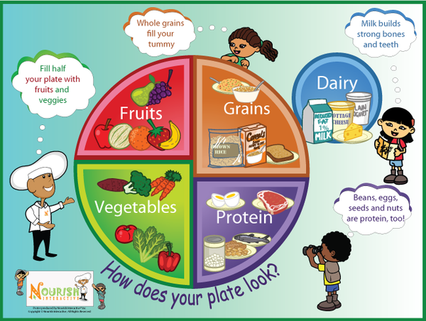 5 Food Groups MyPlate Clip Art
