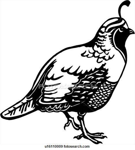 Clip Art Of Animal Quail U16110009 Search Clipart Illustration Quail Black And White Clipart