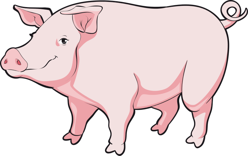Free To Use   Public Domain Pig Clip Art