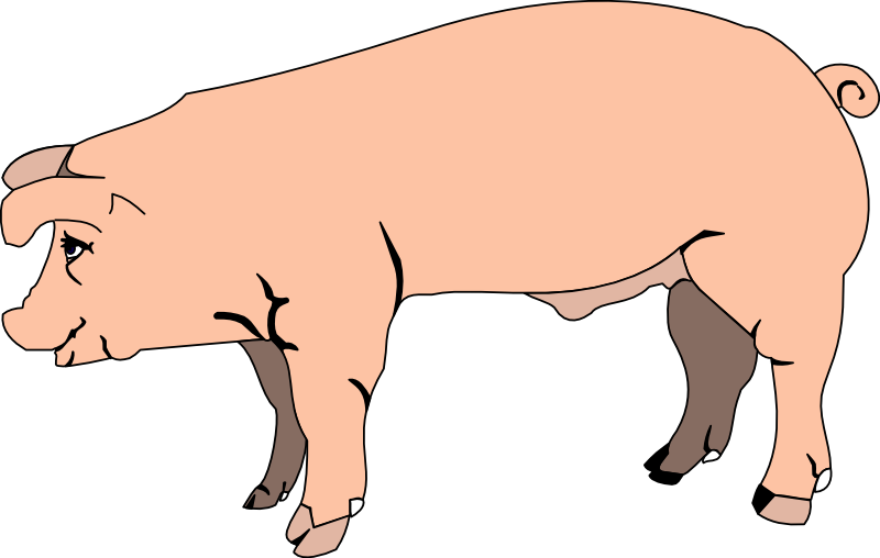 Pig Clip Art   Images   Free For Commercial Use   Page 2