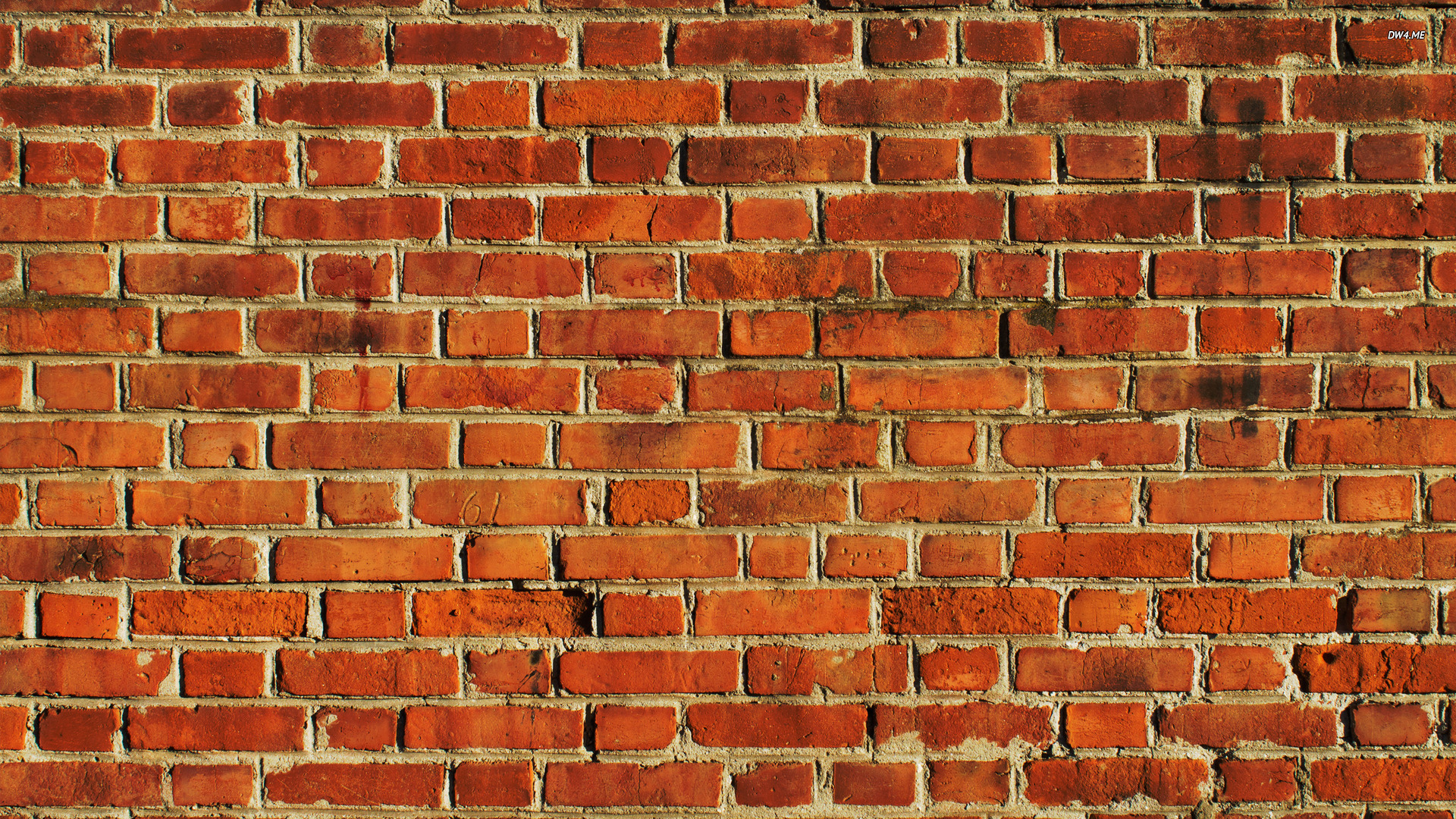 Brick Wall Wallpaper   Photography Wallpapers    817