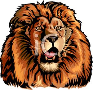 Realistic Roaring Lion   Royalty Free Clipart Picture