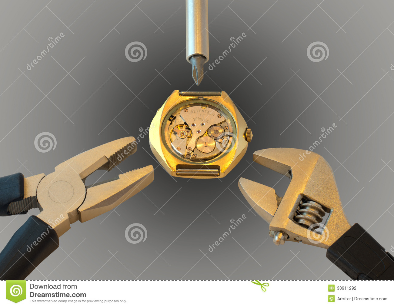 Watch Repair Stock Photography   Image  30911292
