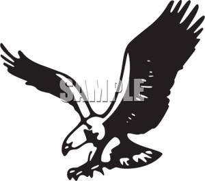 Black And White Bald Eagle Clipart Picture