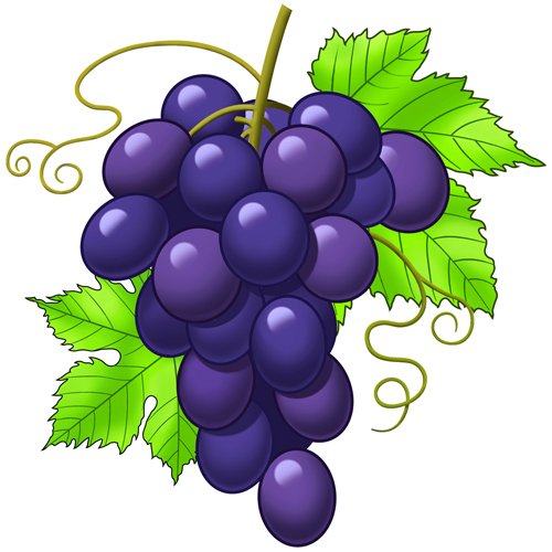 Grape Cartoon Http   Www Topillustrations Com Razzy Portfolio Grapes