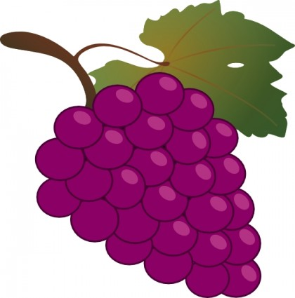 Grape Clip Art Grape Clip Art 13531 Jpg