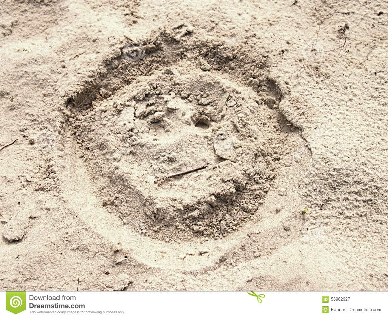 Smiley Face In Summer Beach Sand  Painted Head In Dray Salt Sand