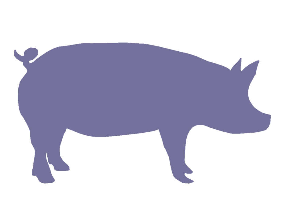 pig silhouette clipart clipart suggest