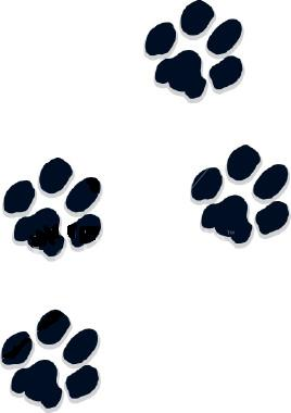 Paw Prints Clipart Free Clip Art Pictures Of Dogs And Dog Web Graphics