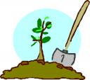 Tree Planting Clip Art