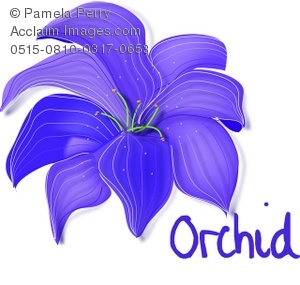 Nothing Found For Images Purple Orchid Clipart