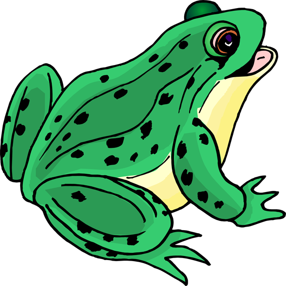 Green Frog Clip Art   Free Cliparts That You Can Download To You