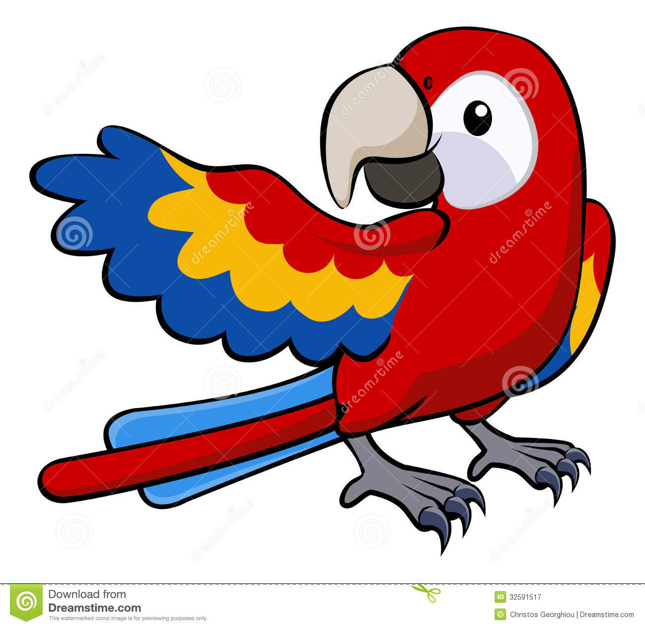 Red Parrot Illustration Royalty Free Stock Photography   Image