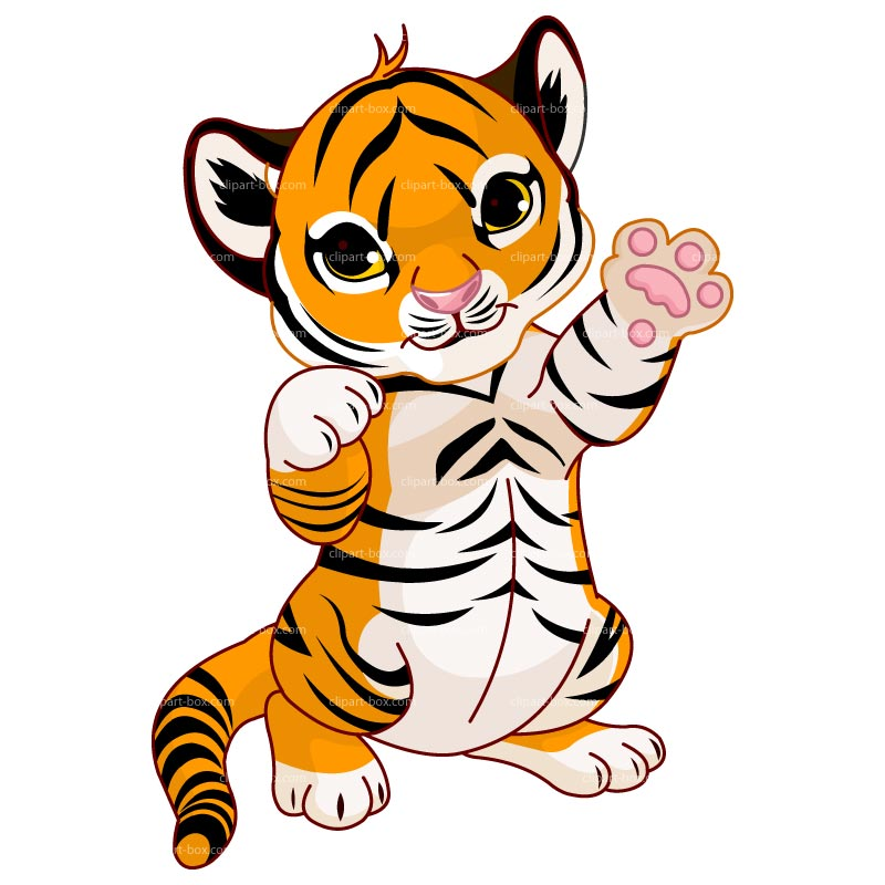 Clipart Cute Baby Tiger   Royalty Free Vector Design