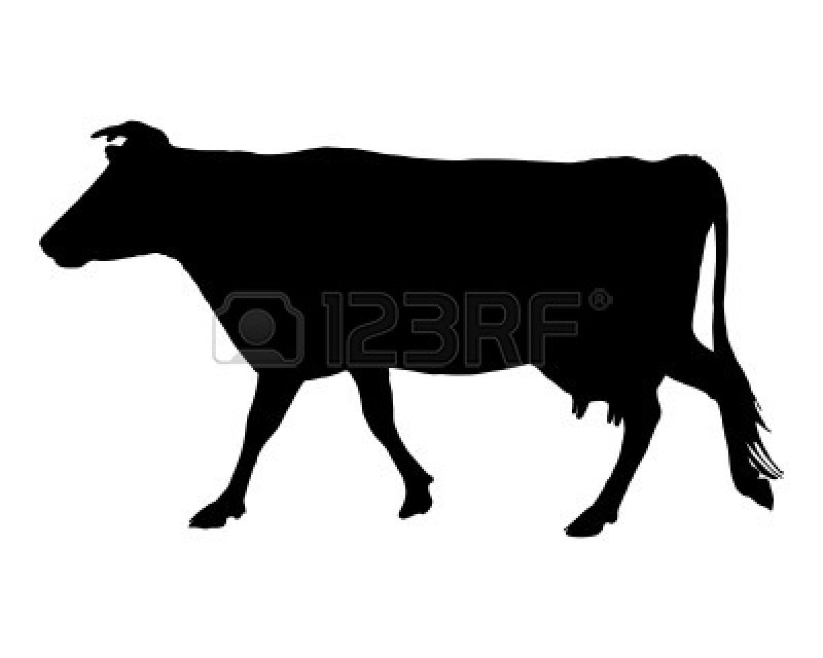 Cow Head Clipart Black And White 5004123 The Black Silhouette Of A Cow
