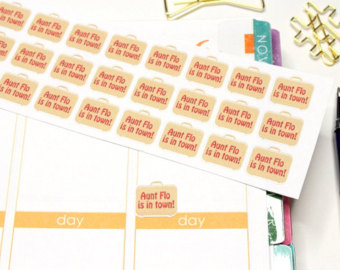 30 Aunt Flo Stickers  Perfect For Your Erin Condren Life Planner