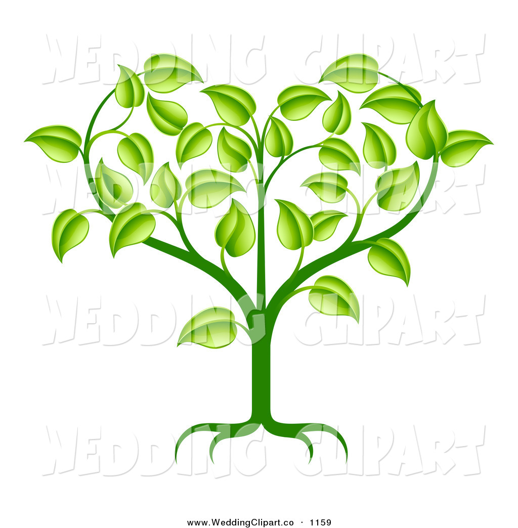 Plant Roots Clipart   Cliparthut   Free Clipart