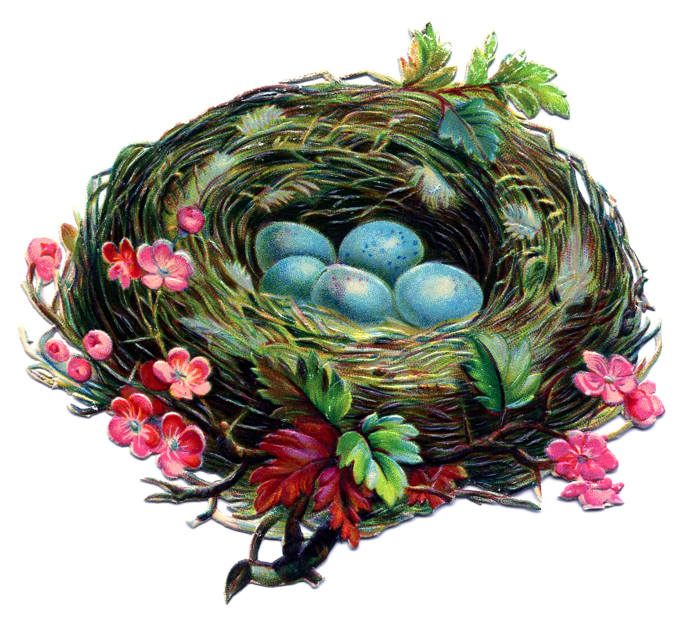 Vintage Clip Art   Pretty Nest With Blue Eggs   The Graphics Fairy