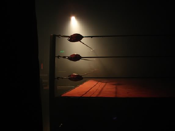 Výsledek obrázku pro boxing ring