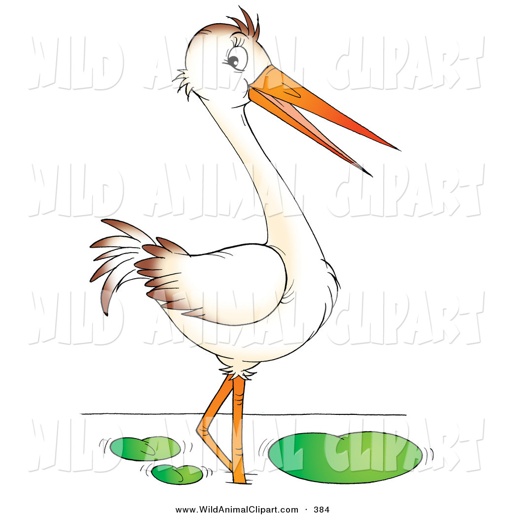 Bird Beak Clipart Clip Art Of A Wading White Bird With A Long Beak